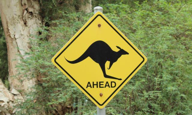 Die wilden Tiere von Healesville Sanctuary